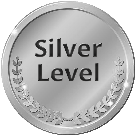 Image result for silver level sponsor